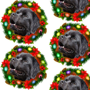 Newfy  Christmas Wreath