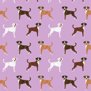 boxer dog fabric - boxer dogs, boxer dog coat colors, cute dog, dogs, brindle boxer dog - purple