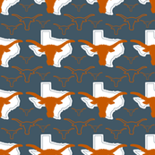 Texas Longhorns Team Colors