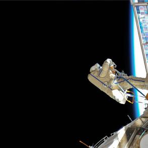 NASA Fat Quarter set 1
