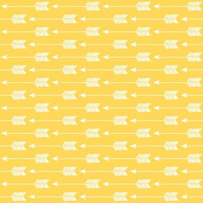 Arrows on Yellow