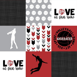 Volleyball//Love at first spike//Warriors - Wholecloth Cheater Quilt