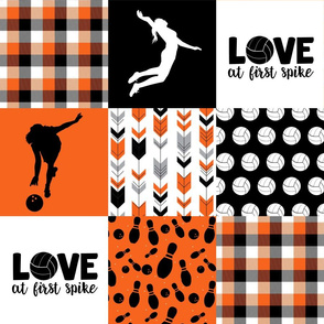 Volleyball/Bowling - Wholecloth Cheater Quilt