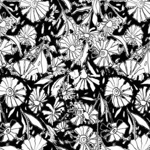 *MARIGOLDS*black&white