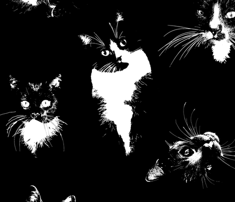 Large Black and White Cats fabric by toocoolunicorn on Spoonflower - custom fabric