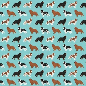 SMALL - cavalier king charles spaniel fabric cute dog pet dogs blemein fabric ruby cavalier black and tan dog cute dog coat dog breed fabric