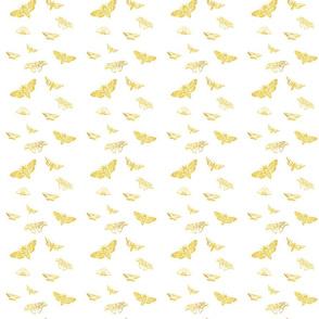 black butterflies gold