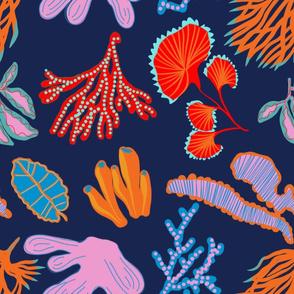 Coral reef navy