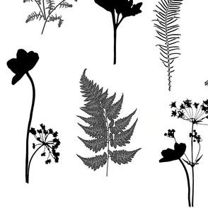 Black and White Fern Garden lg