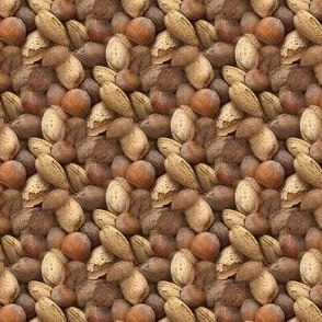Mixed Nuts | Seamless Photo Print