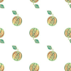 Naranja #6