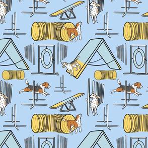 Simple Beagle agility dogs - blue