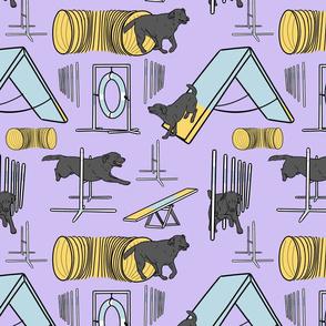 Simple black Labrador Retriever agility dogs - purple