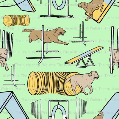Simple yellow Labrador Retriever agility dogs small - green