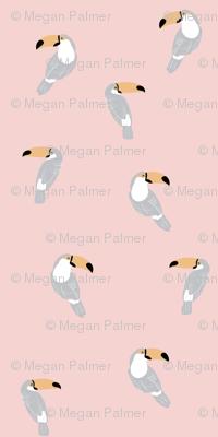 Toucan - Pink