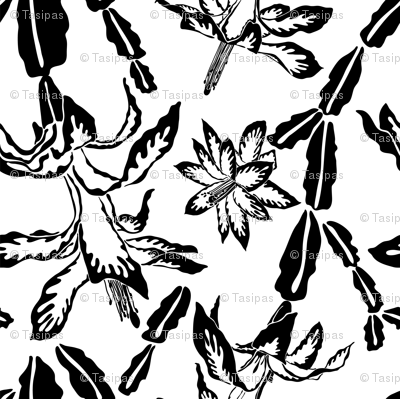 Jumbo large scale blooming cactus black and white pattern