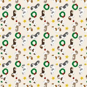 Tiny piebald Smooth Dachshunds - Christmas