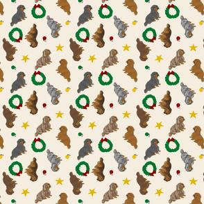 Tiny Longhaired Dachshunds - Christmas