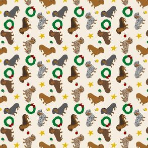 Tiny Smooth Dachshunds - Christmas