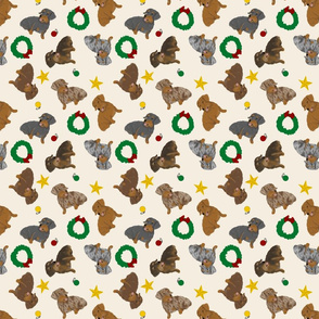 Tiny Wirehaired Dachshunds - Christmas
