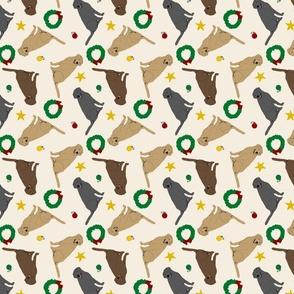 Tiny Labrador Retrievers - Christmas