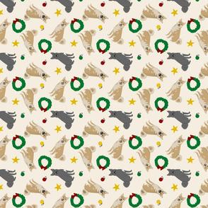 Tiny Norwegian Buhunds - Christmas