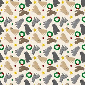 Tiny Pyrenean Shepherds - Christmas