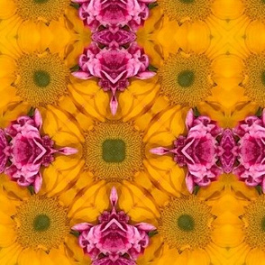 Hot Pink Yellow Sunflower Floral  _ Miss Chiff Designs