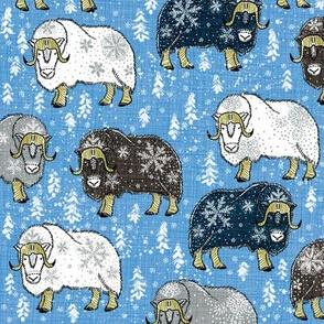 Wintery Mixed Musk-Oxen on Pantone boy-blue V4