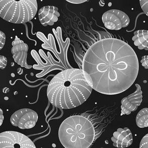 Ocean life - black and white