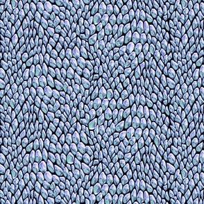 pale blue scales