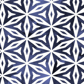 Shibori Geometry