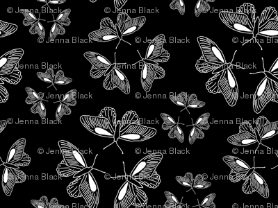 butterfly trios enlarged