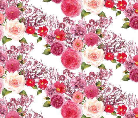 Dark-pink-roses-white-background_shop_preview