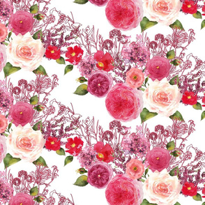 watercolor blush pink, dark pinks, res, and purples old fashion roses