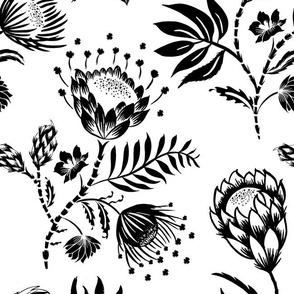 Protea Black and White