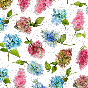 Watercolor hydrangeas in pinks and blues