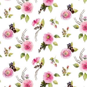 Watercolor print of light pink blush roses