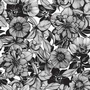 Hellebore lineart florals | LARGE