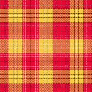 Iowa State Plaid Team Colors