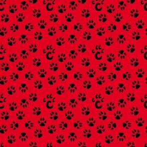 Cincinnati Bearcats Team Colors