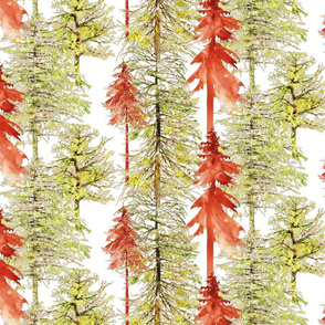 pine trees in watercolor greens and browns