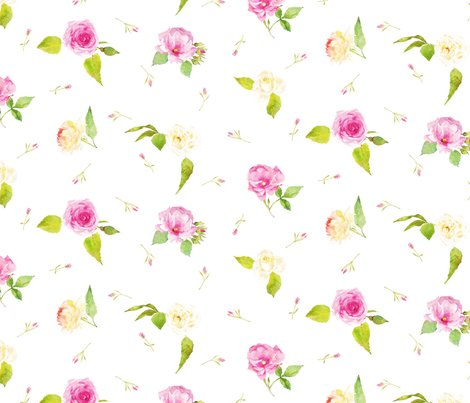 Pink-and-white-roses-white-background_shop_preview
