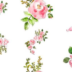 pink rose arrangements in watercolor