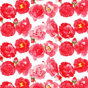 Large red and pink watercolor roses