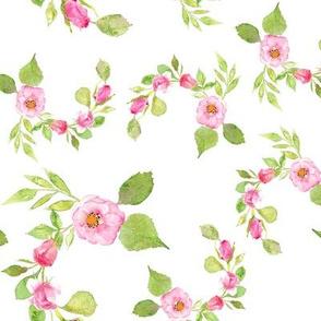 Watercolor pink rose swirl