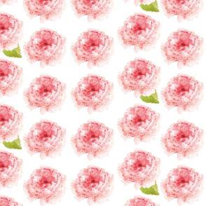watercolor single pink rose
