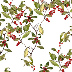 Large image of red winter berries on a branch in watercolor