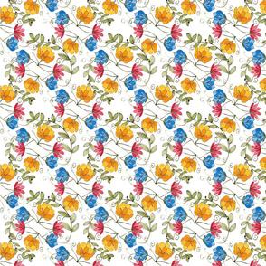 Ecuadorian amarillo azul y rojo flowers-26