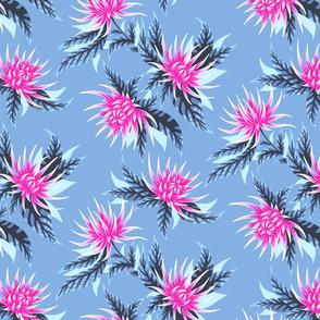 Chrysanthemums - Pink / Grey